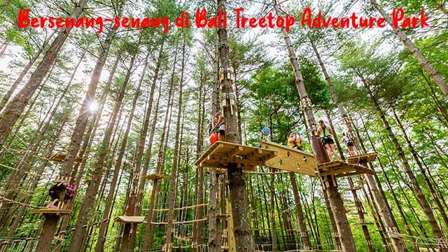 Bersenang-senang di Bali Treetop Adventure Park